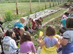 educating kids about gardening